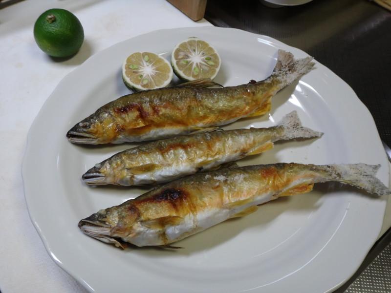 [食][鮎][塩焼き][魚]
