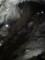 [秋芳洞][秋吉台][鍾乳洞][山口][山口県][美祢市][秋芳町]