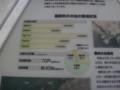 [福井県][越前岬][水仙ランド][丹生郡][越前町]