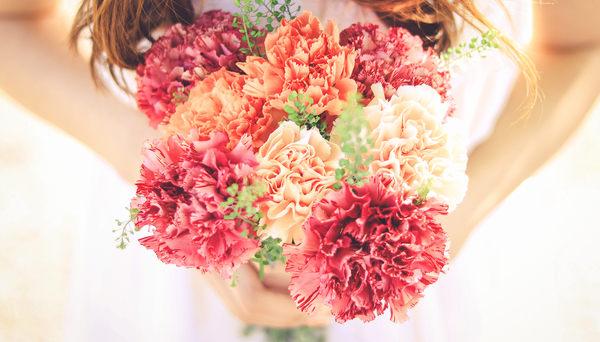 carnationflower