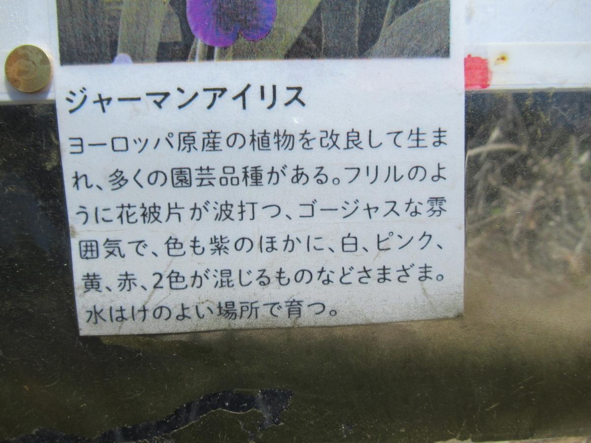f:id:tsubaki333tan:20210526170014j:plain