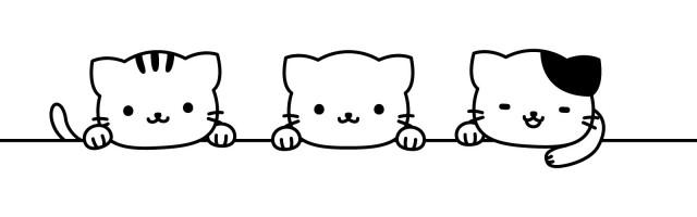 f:id:tsubaki333tan:20210819140239j:plain