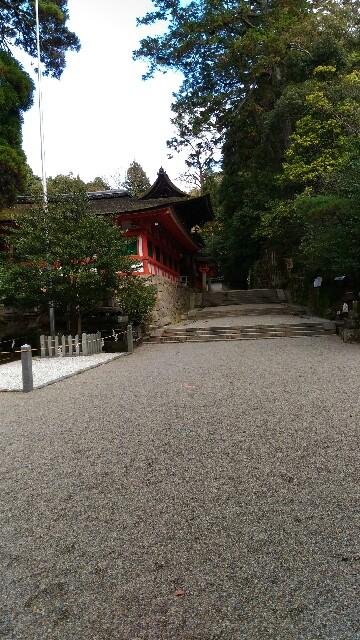 f:id:tsubakidoh:20161128175246j:image