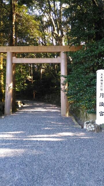 f:id:tsubakidoh:20161231220339j:image