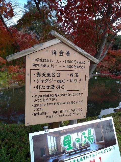 f:id:tsubakidoh:20181211150657j:plain