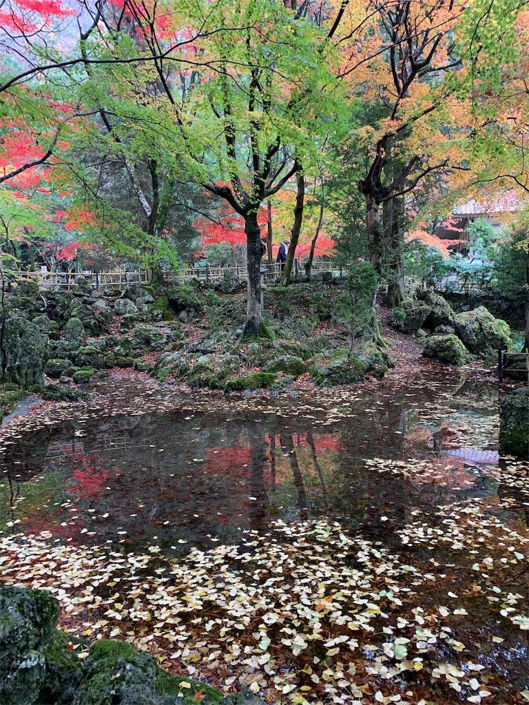 f:id:tsubakidoh:20191127175411j:image