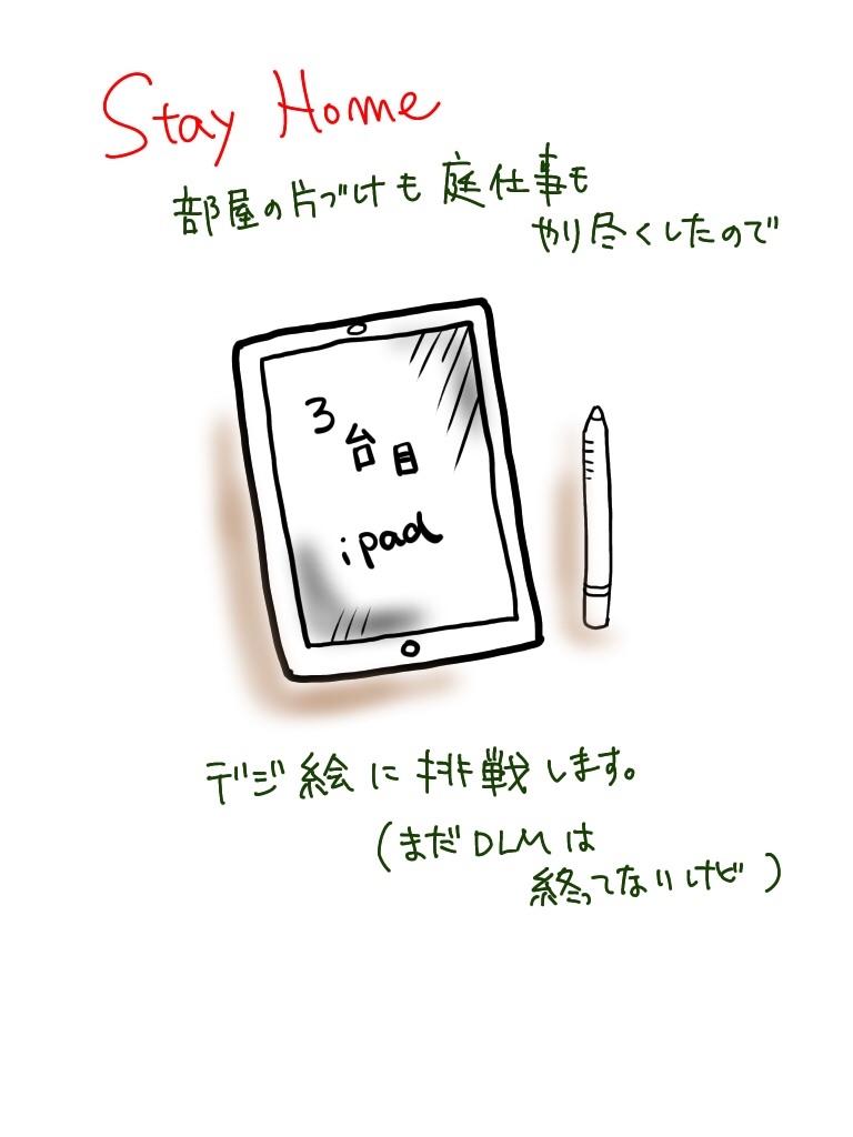 f:id:tsubakidoh:20200501173229j:image