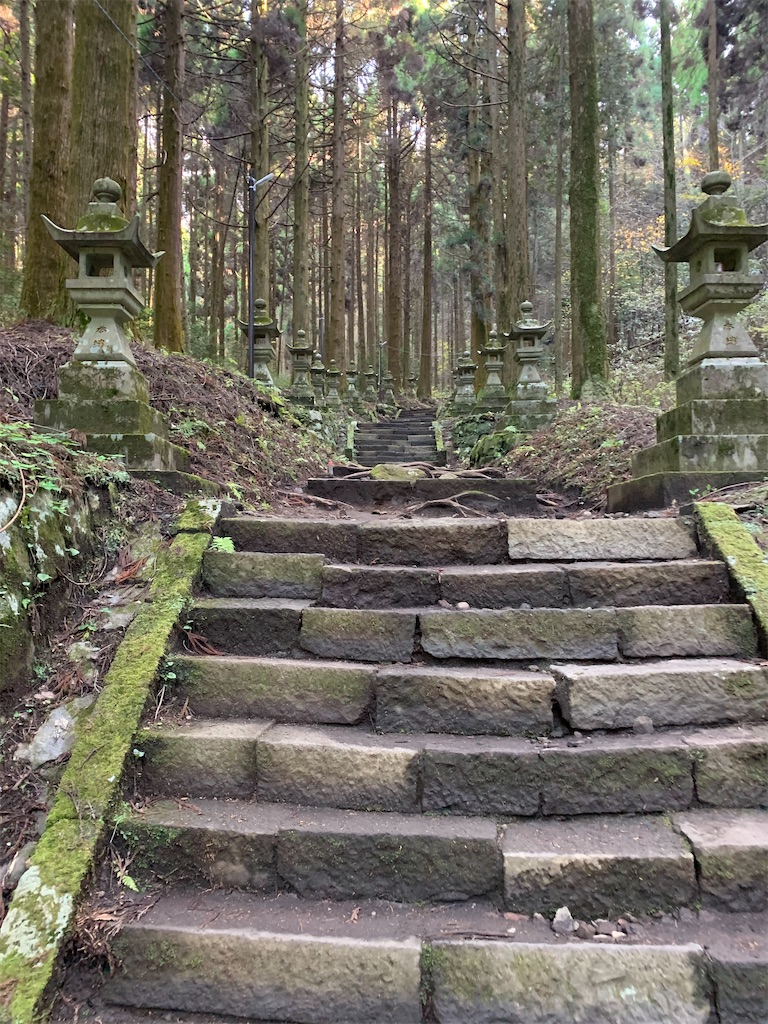 f:id:tsubakidoh:20201127174547j:image