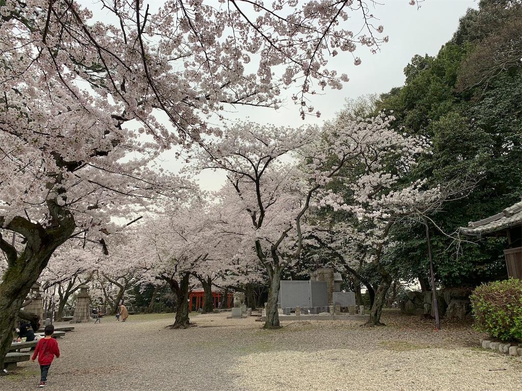f:id:tsubakidoh:20210331174527j:image