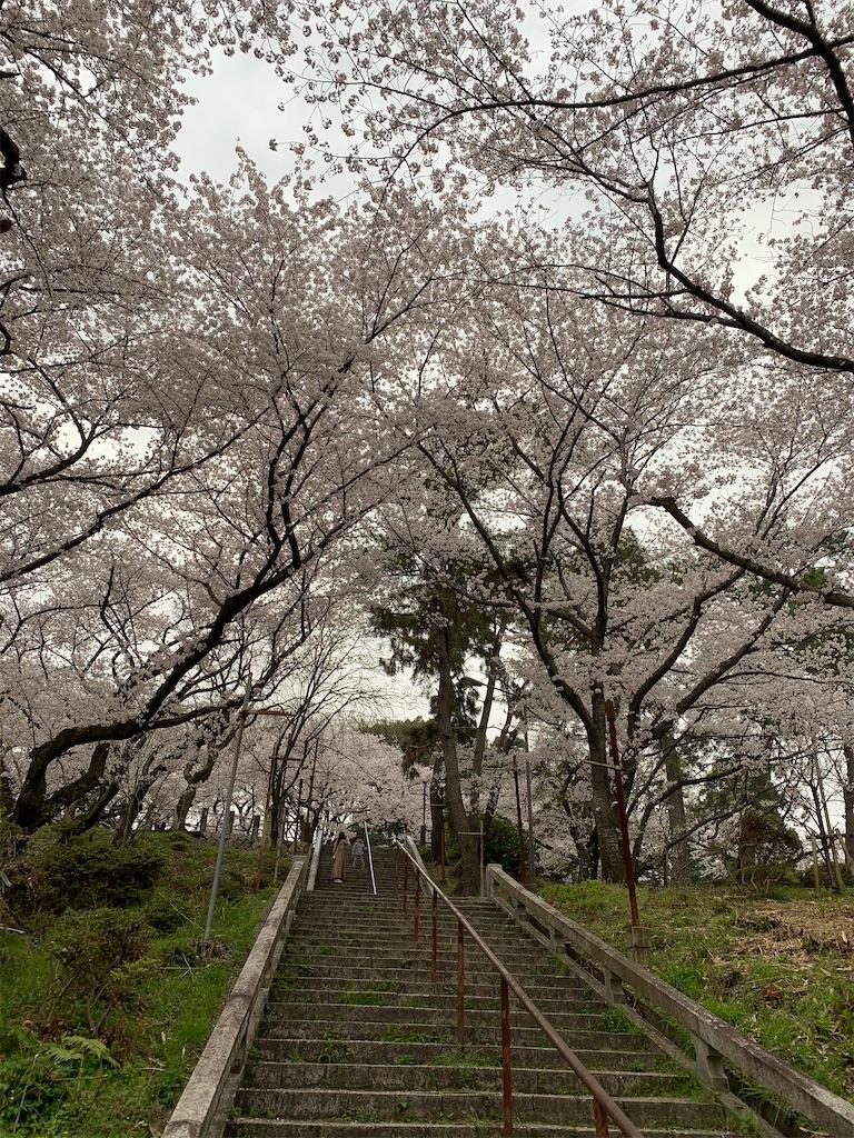 f:id:tsubakidoh:20210331174532j:image