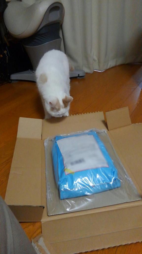 f:id:tsubakimoto_neko:20160702145127j:plain