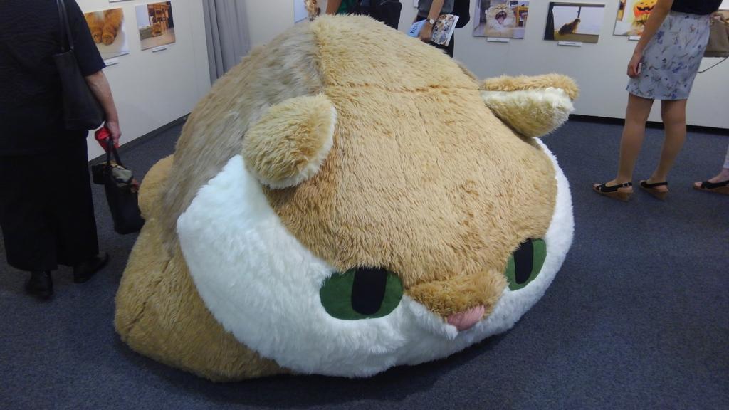 f:id:tsubakimoto_neko:20160811215641j:plain