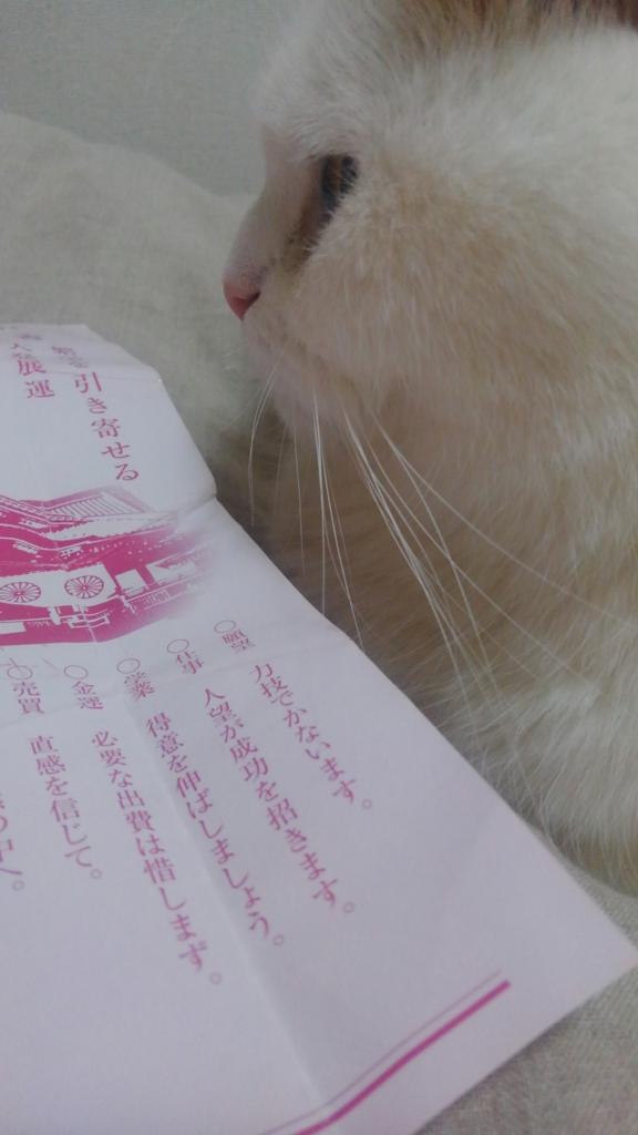 f:id:tsubakimoto_neko:20161116122804j:plain