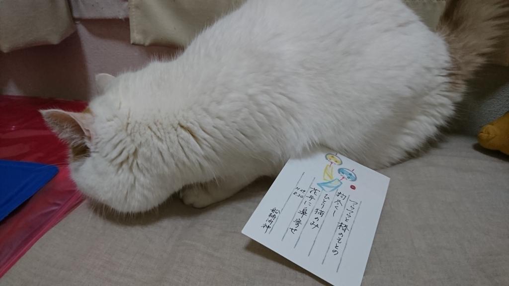 f:id:tsubakimoto_neko:20170823213348j:plain