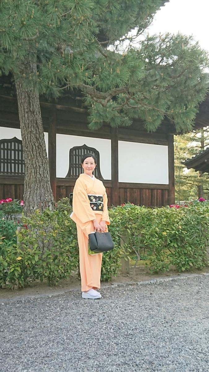 f:id:tsubakimoto_neko:20190426222358j:plain