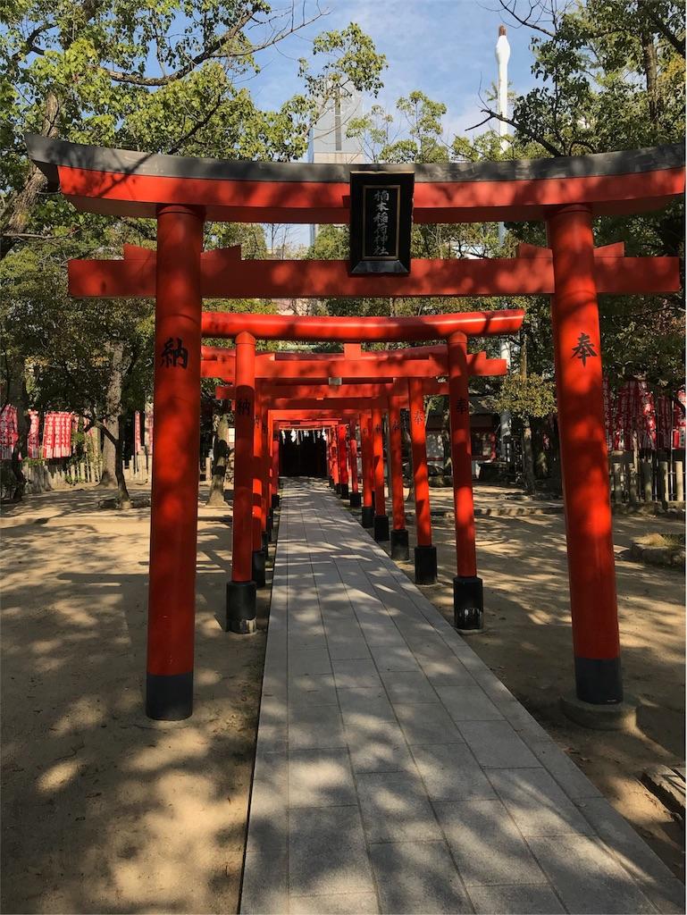 f:id:tsubara_tsubara:20171115022002j:image