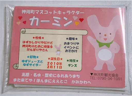 f:id:tsubara_tsubara:20171204002236j:image