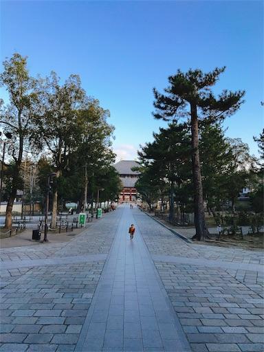 f:id:tsubara_tsubara:20180103075239j:image