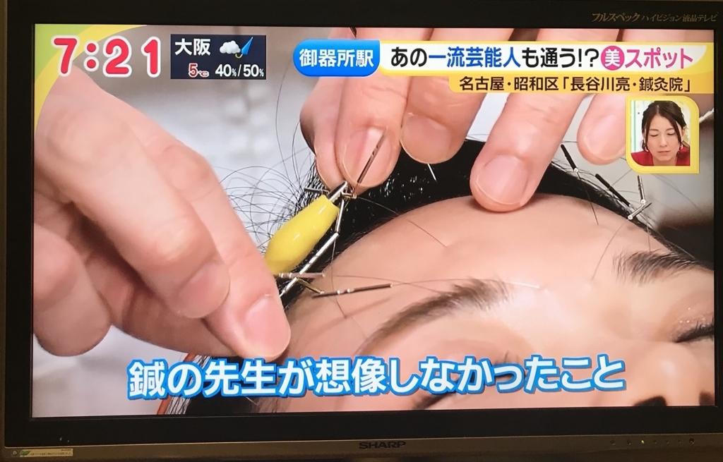 f:id:tsubasa-shinya:20180201160658j:plain