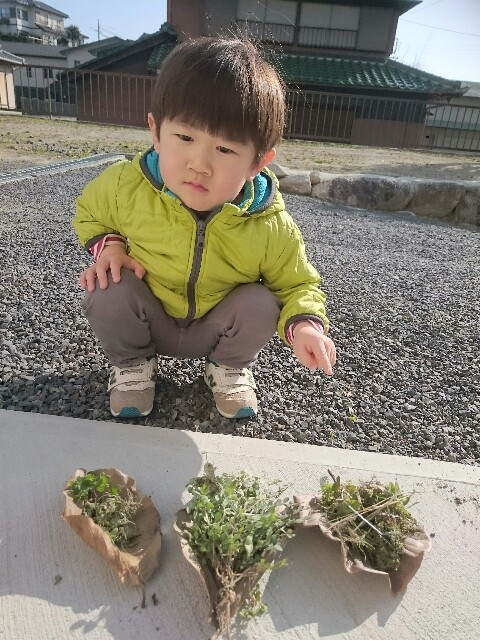 f:id:tsubasa-shinya:20180221001526j:image