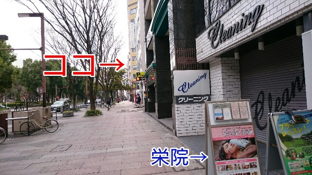 f:id:tsubasa-shinya:20180304181133j:plain