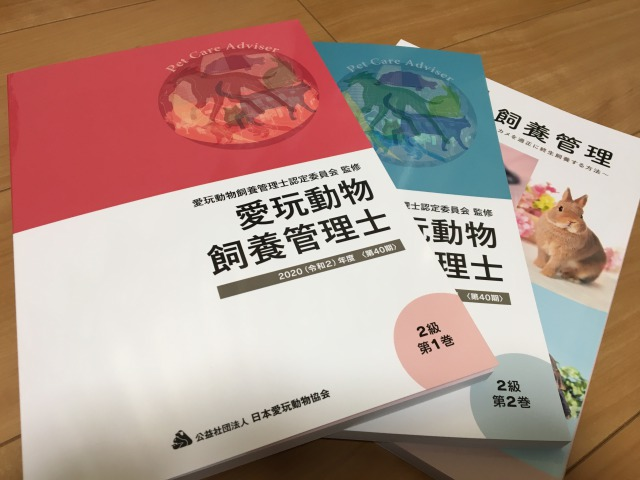 f:id:tsubasa0424:20200504110151j:plain