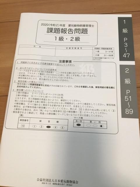 f:id:tsubasa0424:20200504111051j:plain