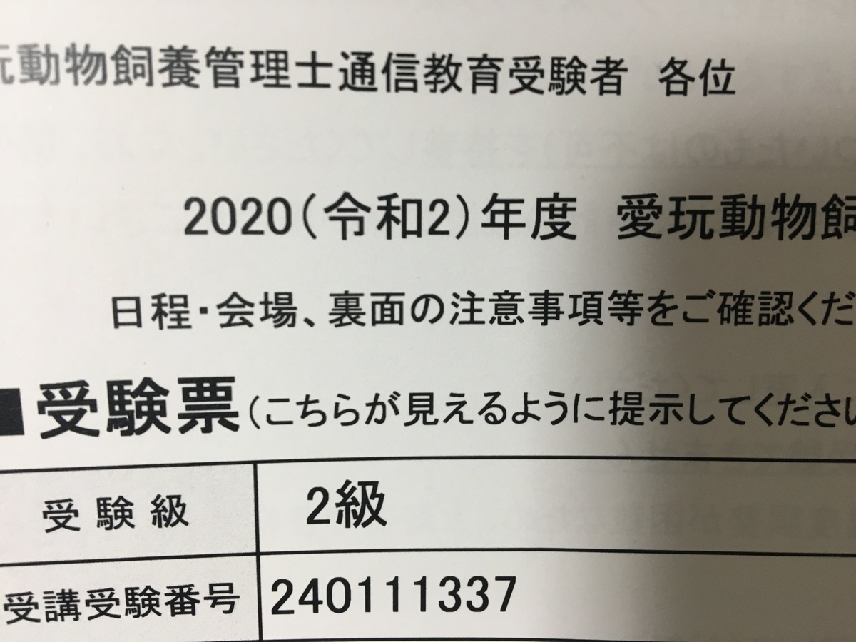f:id:tsubasa0424:20200921184412j:plain