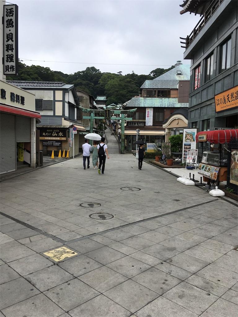 f:id:tsubasaichijo:20180712215604j:image