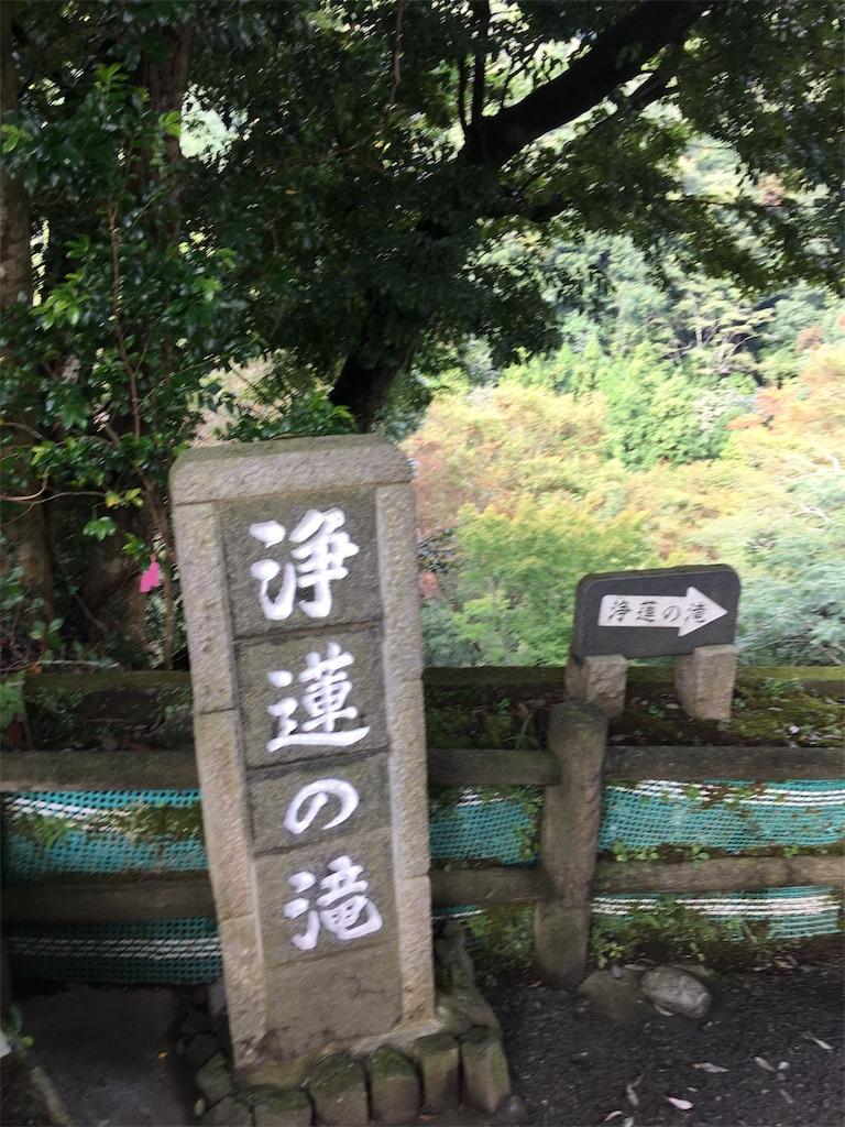f:id:tsubasaichijo:20181015094618j:image
