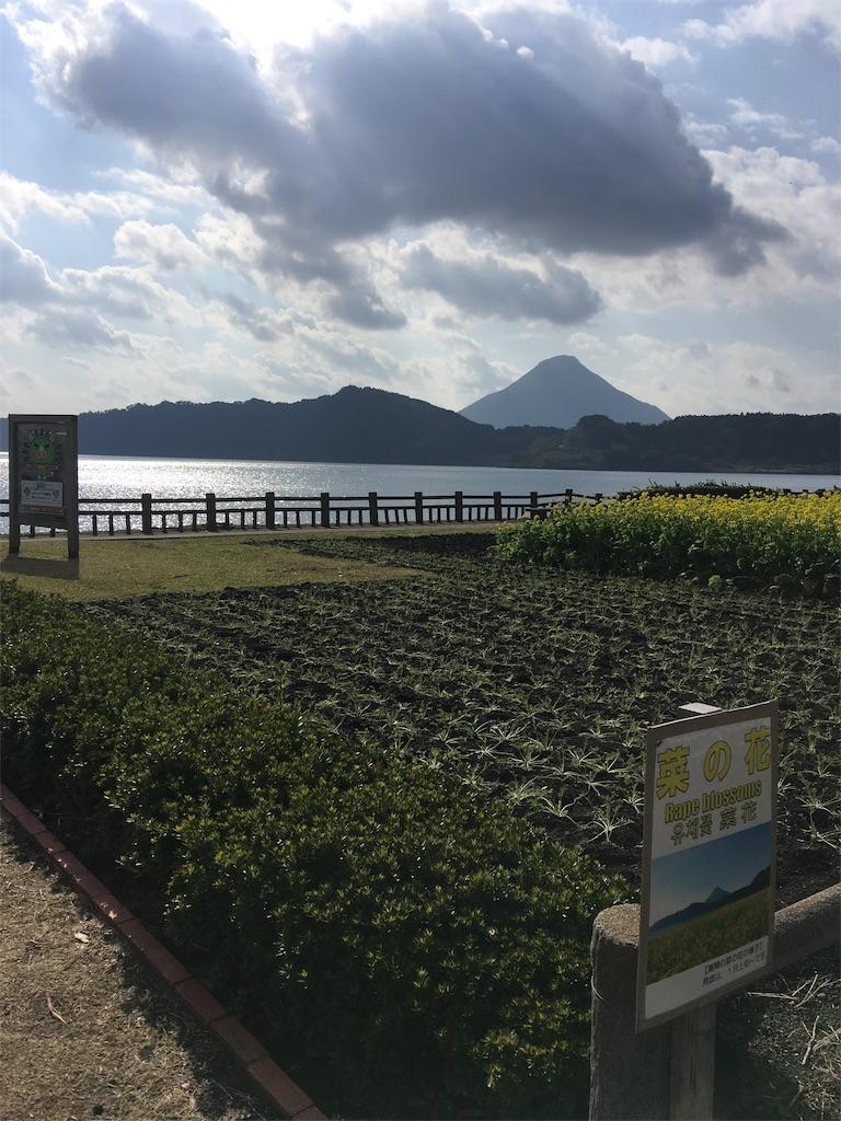 f:id:tsubasaichijo:20181218001615j:image
