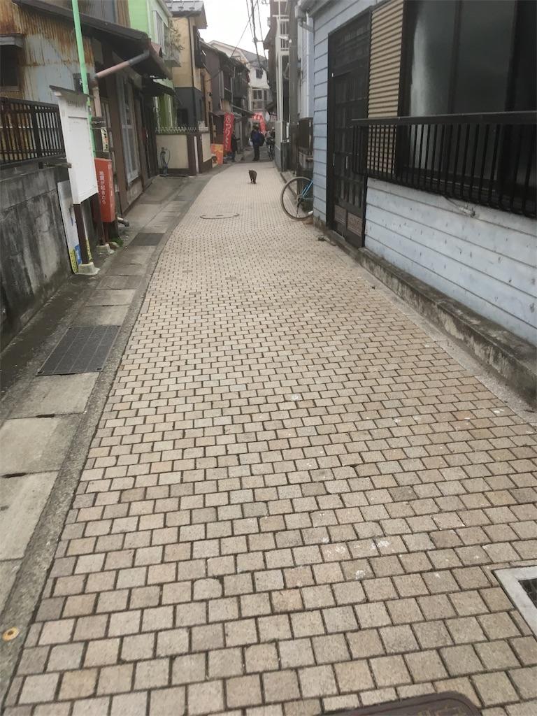 f:id:tsubasaichijo:20190217014053j:image