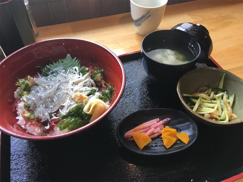 f:id:tsubasaichijo:20190621134527j:image