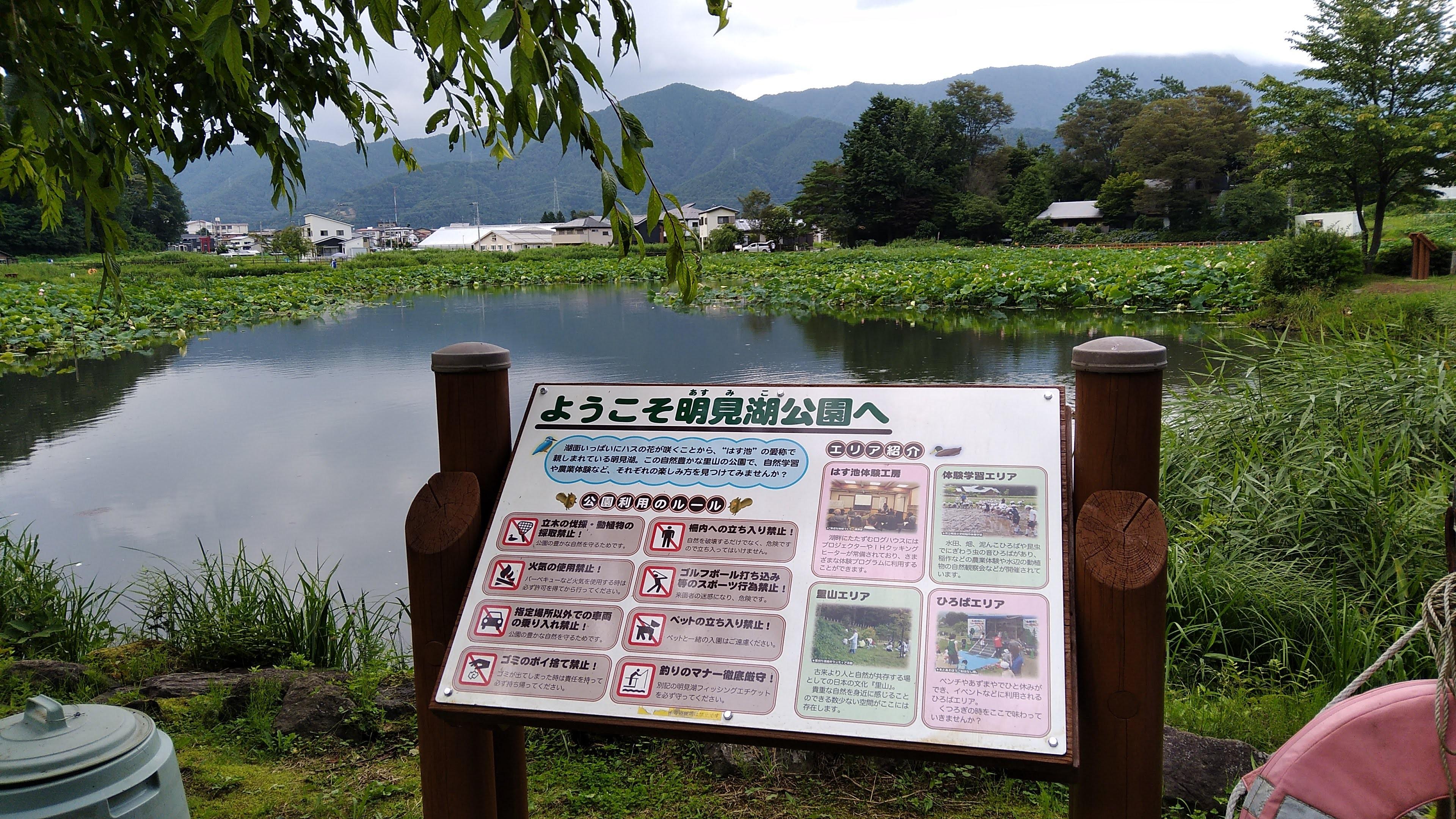 f:id:tsubasaichijo:20200802002942j:image