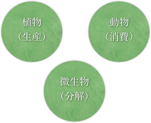 f:id:tsubasakato:20180211212925p:plain