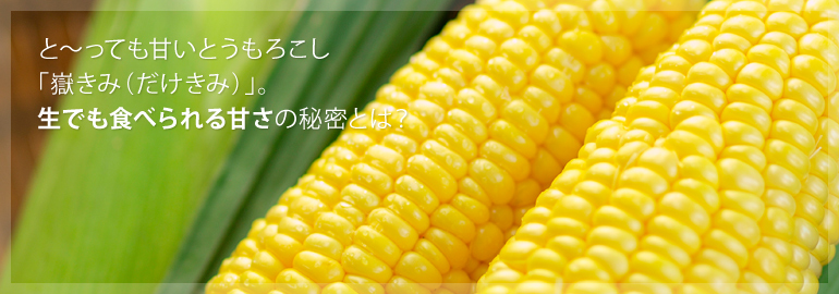 f:id:tsubasanano:20160711095347j:plain