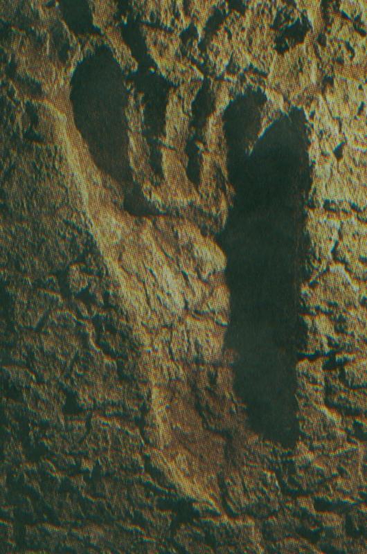 f:id:tsuboikajo:20051228153010j:image:w150