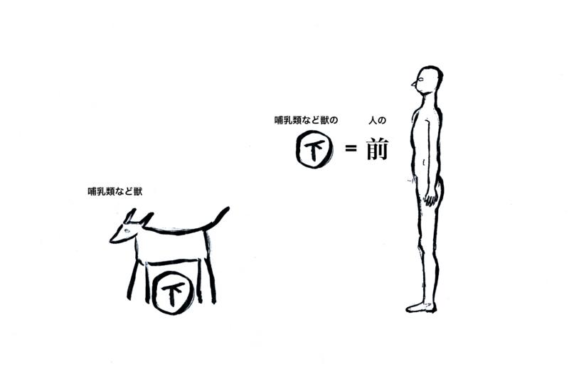 f:id:tsuboikajo:20120501163712j:image:w640