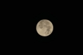 [星空]中秋の名月 400mm×1.3クロップ