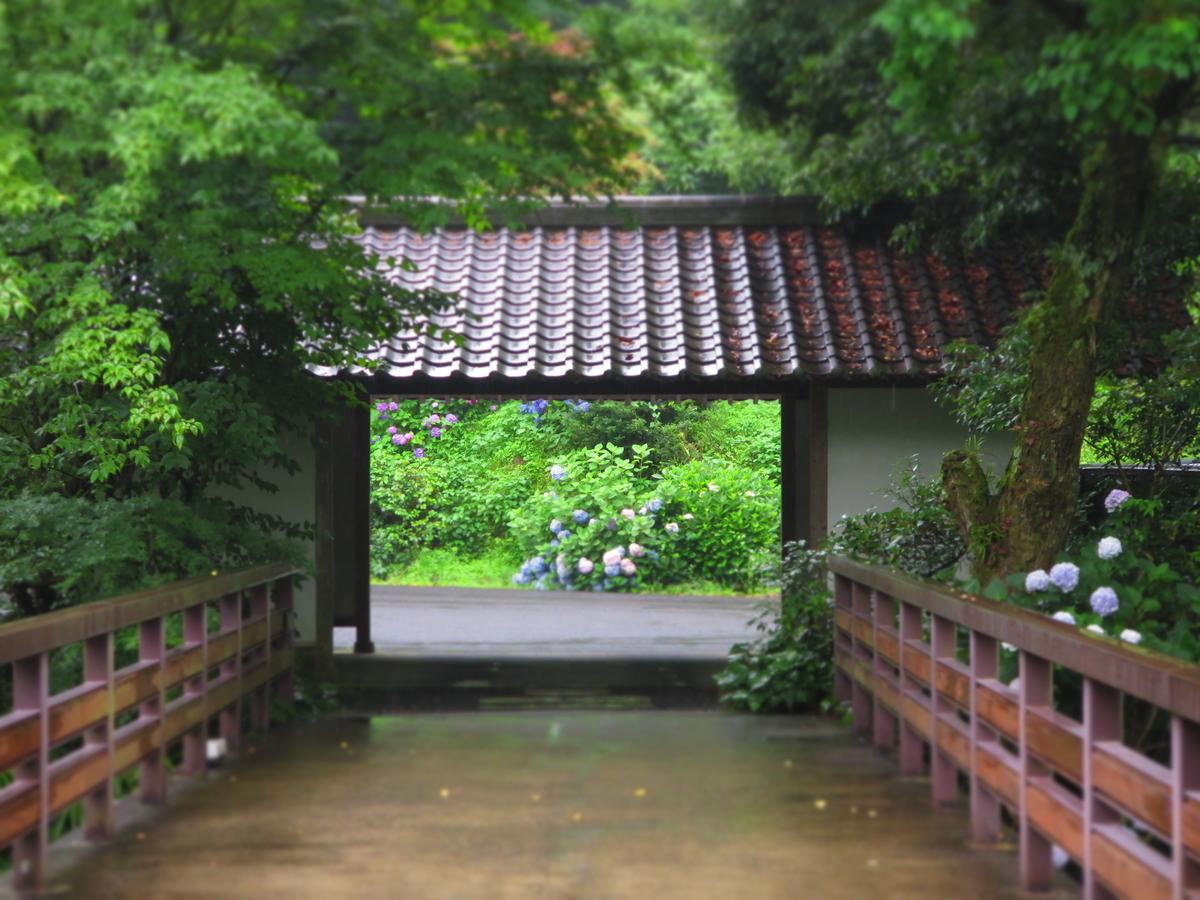 f:id:tsuchankaranotegami:20190703200920j:plain