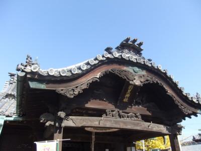 f:id:tsuchino-oto:20121125105316j:image