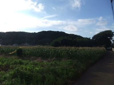 f:id:tsuchino-oto:20130627170223j:image