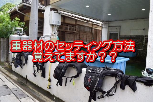 f:id:tsuchinokos:20171015222659j:plain