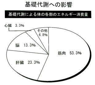 f:id:tsuchiura:20081108191456j:image