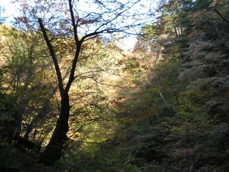 f:id:tsuchiura:20081118132750j:image