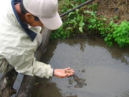 f:id:tsuchiura:20101031112609j:image