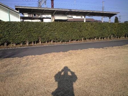 f:id:tsuchiura:20101219134657j:image