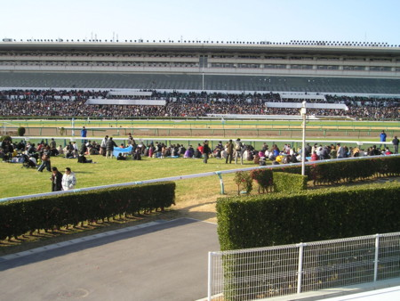 f:id:tsuchiura:20101228144951j:image