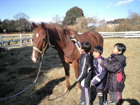 f:id:tsuchiura:20110130133957j:image