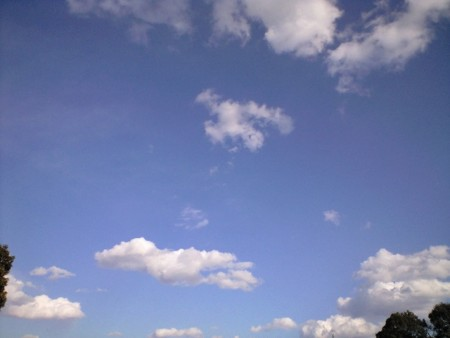f:id:tsuchiura:20110130142225j:image